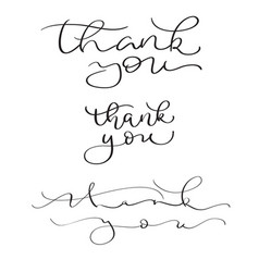 set of hand drawn thank you text on white vector image vector image