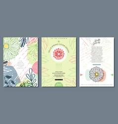 decorative invitation brochure and cards set vector image