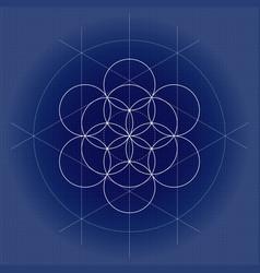 Flower life white sacred geometry vector