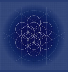 flower of life white sacred geometry vector image