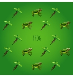 Green background with frog and unusual flower vector image