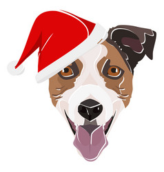 Jack russell terrier with red christmas hat vector