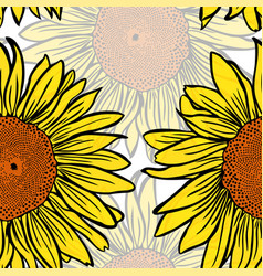 Large yellow blossoming sunflowers vector