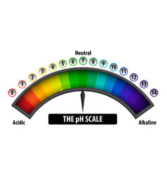 ph scale diagram on white background vector image