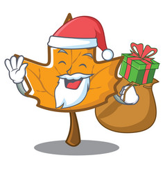 Santa maple character cartoon style vector