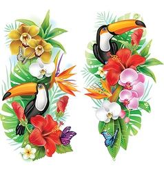 Tropical flowers toucan and a butterflies vector image vector image