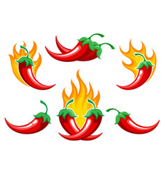 chili pepper on fire set vector image