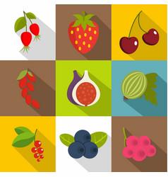 edible fruit icons set flat style vector image