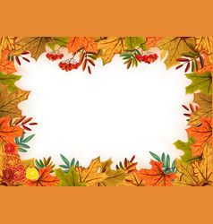 Autumn leaves rowan and flowers Template frame vector