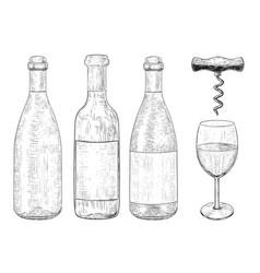bottles wine set hand drawn sketch vector image