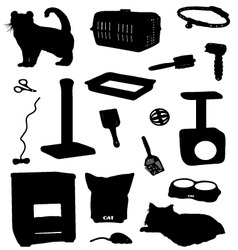cat accessories vector image
