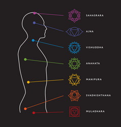 Chakra system human body vector