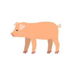 Cute cartoon little pig standing side view vector