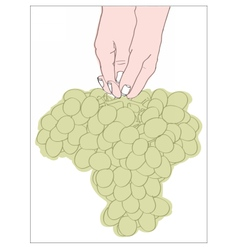 Digital female hand holding a bunch vector