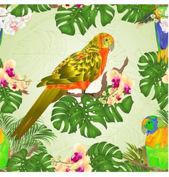 seamless texture sun conure parrots standing vector image