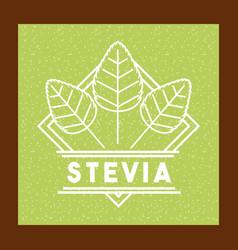 Stevia natural sweetener vector