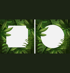 two frames with green leaves vector image vector image