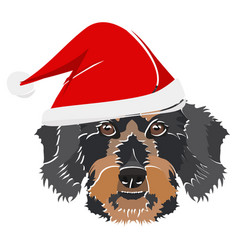 Wire-haired dachshund with red christmas hat vector