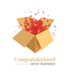 congratulations box concept vector image
