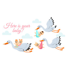 happy flying storks vector image