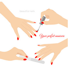 manicure concept nail vector image