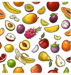 Set tropical fruits color vintage vector
