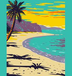 Trunk bay beach located within virgin islands vector