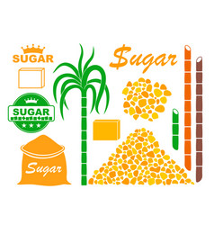 sugar vector image vector image