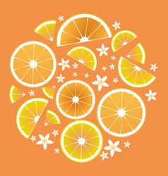 Citrus collection slices orange lemon lime and vector