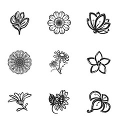 Decor flower icon set simple style vector