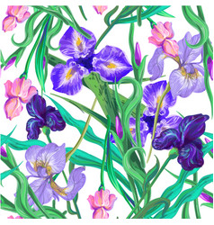 seamless pattern with flowers iris hand vector image