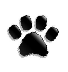 black paw print vector image vector image