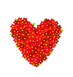 heart made of red flowers vector image