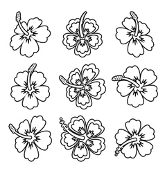 Hibiscus flower outline icons vector