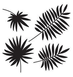 Palm leaf set on white background vector