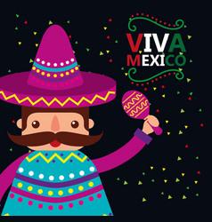 viva mexico celebration vector image