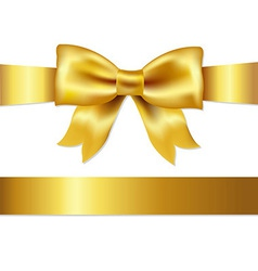 Gift Satin Bow vector image