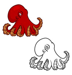 Octopus isolated on white background vector