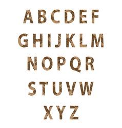 Texture parquet font vector image vector image