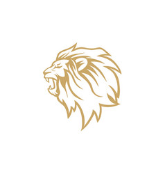 angry roaring gold lion head logo design vector image