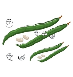 Cartoon green bean pods with white seeds vector