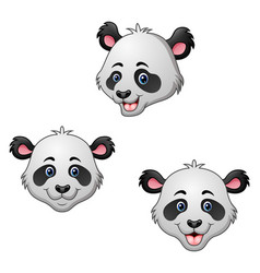 cartoon panda head set vector image