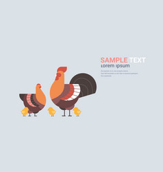 Cute chicken family cartoon hen cock and chick vector