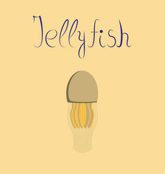 Flat on background biology jellyfish vector