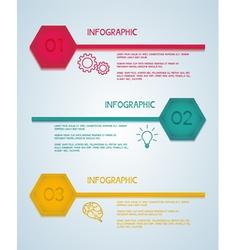 Hexagon infographic template vector image