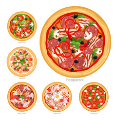 Set of pizza with different vector