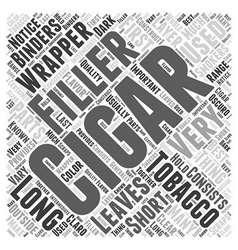 The Parts of a Cigar Word Cloud Concept vector image