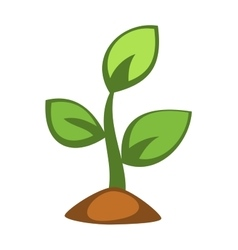 Young green plant sprout vector