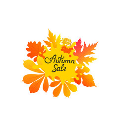 Autumn sale hand-drawn text with yellowed leaves vector