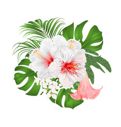 bouquet with tropical flowers floral arrangement vector image